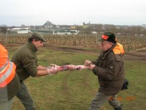 Gemeinsame Jagd - gemeinsames Versorgen der Strecke